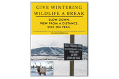 Vertical Poster of snowy mountain and text 'Give Wintering Wildlife a Break. Slow Down. View from a Distance. Slow Down.